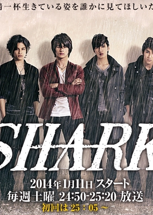 image of drama Shark [JDRAMA]